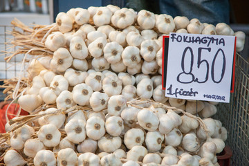 Garlic for Sale, Budapest, Hungary