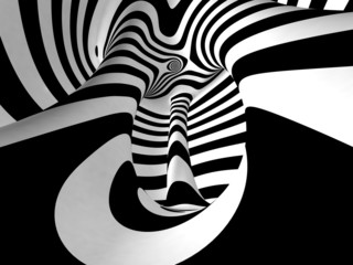 Black and White Stripes Projection on Torus.