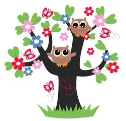 two sweet brown owls in a tree
