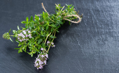 Bunch of Winter Savory