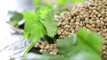 Portion of Coriander Seeds (loopable video)