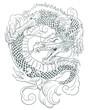Dragon - 64237309
