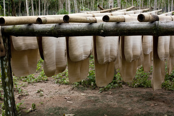 Rubber Sheet on bamboo clothesline