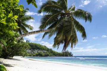 Sunny beach on Saychelles