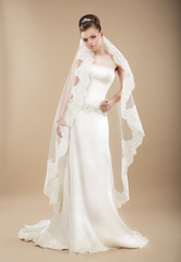 Sophistication. Perfect Bride in Wedding Dress and Veil