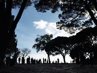 silhoutte of people and trees
