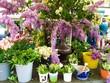 Frühling auf dem Wochenmarkt