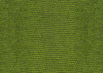 Green snakeskin