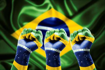 Torcida do Brasil Unida