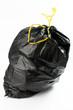Sacchetto di spazzatura su sfondo bianco