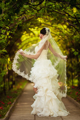 A bride in a veil in the park