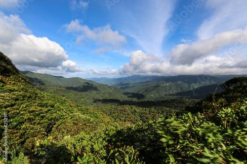 Fotobehang Centraal-Amerika Landen Monteverde, Costa Rica