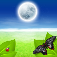 Full moon, green grass and insects
