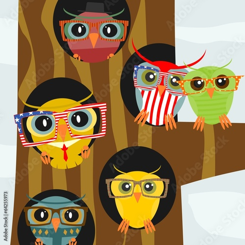 Hipster owl - 64255973