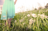 Girl  in blue dress in spring field - 64256331
