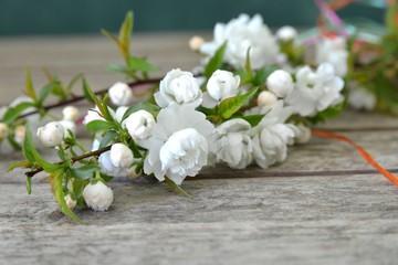 Weiß blühender Frühlingszweig auf Holz