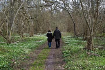 Springtime recreation walk