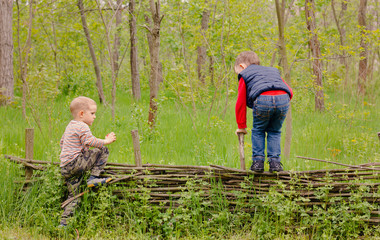 Two young boys playing on a rustic fence