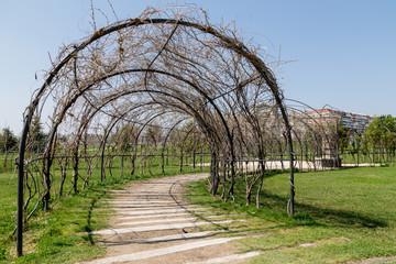 passage shady garden