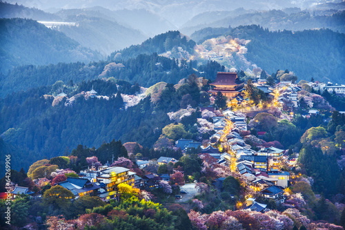 Yoshinoyama, Japan - 64269906