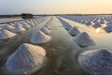 Heap of sea salt