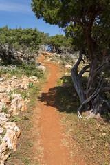 Sentier d'Aphrodite sur la côte