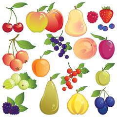 Fruit icon set. Fresh orchard and garden fruit.