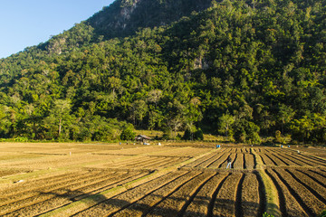 New ploughed field.in front of a mountain in Thailand..