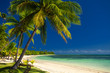 Palm trees and a white sandy beach at Fiji