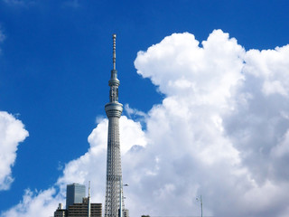 The Tokyo Skytree.