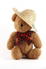 Teddy bear with a straw hat