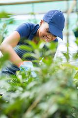 african american female nursery worker trimming plants