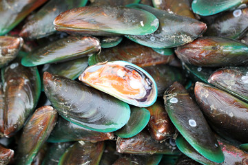 green mussel in seafood market.