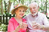 Senior Couple Drinks Champagne