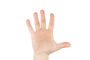 Male Hands, Five Fingers