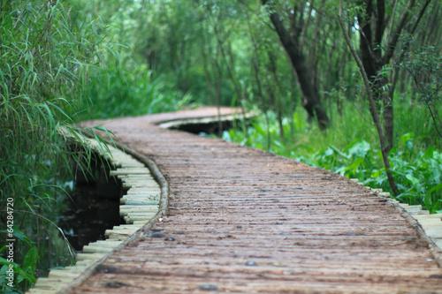 The wood bridge at xixi wetland hangzhou china © sorayuth26