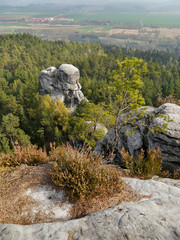 Sandstone rock  -Bohemian paradise