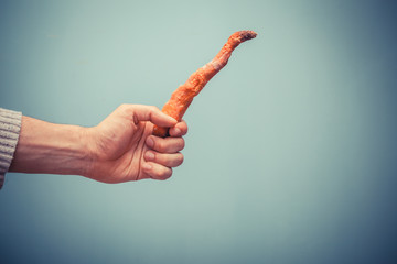 Hand holding rotten carrot