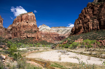 The Virgin River in Zion Canyon