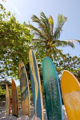 Surfboards on Praia Lopes Mendes beach Ilha Grande Island Brasil