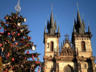 Cathedral Christmas Tree Prague