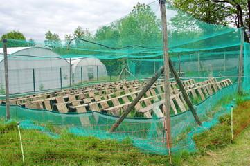 parc a héliciculture