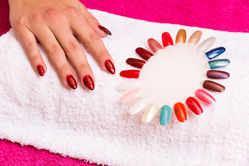 Colorful nails at the beautician with woman's hand.