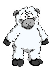 Funny woolly cartoon sheep