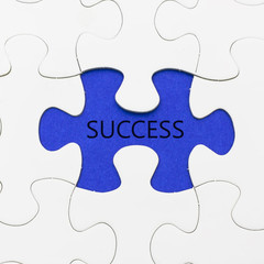 Missing puzzel in blue with word success.