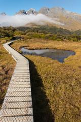 boardwalk across wetland in Fiordland, New Zealand