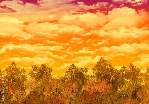 森と空の背景・秋空