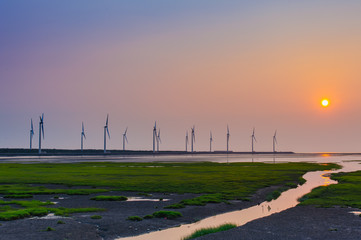sillouette of Wind turbine array at seashore wetland
