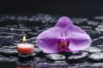 burning candles with orchid on wet blacks
