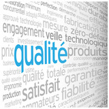 """Nuage de Tags """"QUALITE"""" (qualité garantie service client totale)"""